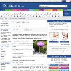 Chardon-Marie (Silybum marianum) : propriétés, bienfaits de cette plante en phytothérapie