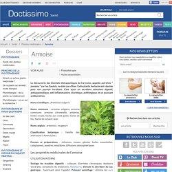 Armoise (Artemisia vulgaris) : propriétés, bienfaits de cette plante en phytothérapie
