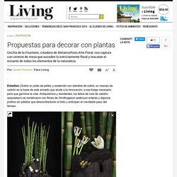 Propuestas para decorar con plantas - Javier Picerno