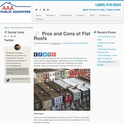 Pros and Cons of Flat Roofs