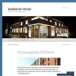 EU-prosjektet EFFESUS