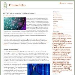 Prospectibles » Big Data, petite synthèse : quelle évolution ?