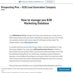 How to manage you B2B Marketing Database – Prospecting Pros – B2B Lead Generation Company