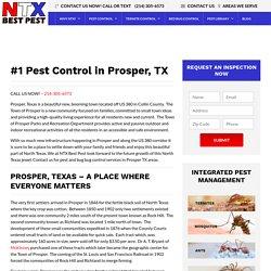 Find Top Pest Control Services In Prosper