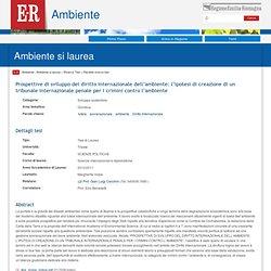 Prospettive di sviluppo del diritto internazionale dell'ambiente: l'ipotesi di creazione di un tribunale internazionale penale per i crimini contro l'ambiente - Ambiente Regione Emilia-Romagna