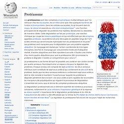 Protéasome