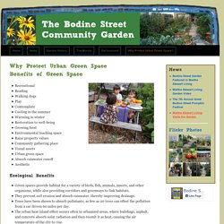 The Bodine Street Community Garden