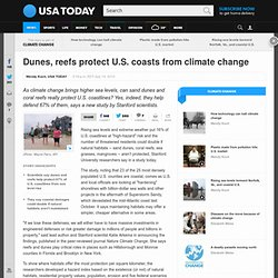 Dunes, reefs protect U.S. coasts from climate change