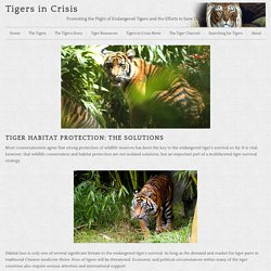 Protect Tiger Habitat