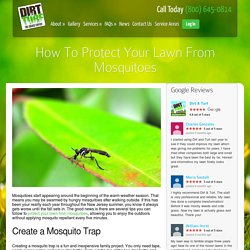 How to Protect Your New Jersey Lawn From Mosquitoes
