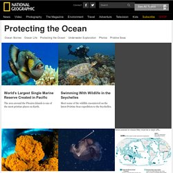 Protecting the Ocean
