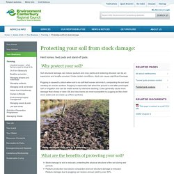 Protecting soil from stock damage