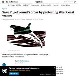 Save Puget Sound's orcas by protecting West Coast waters