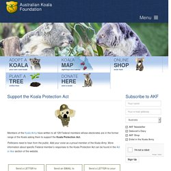 Support the Koala Protection Act