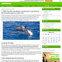 L'ONU franchit une étape cruciale pour la protection de la biodiversité en haute mer