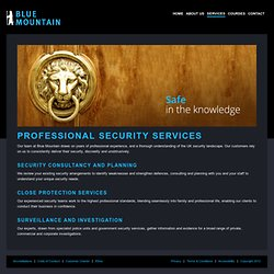 Blue Mountain Group - Security