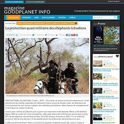 La protection quasi militaire des éléphants tchadiens