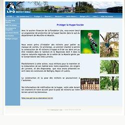 Site de la Ligue pour la Protection des Oiseaux en Lorraine / Protèger la Huppe