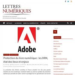 Protection du livre numérique : les DRM, état des lieux et enjeux