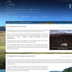 Protection des troupeaux contre la prédation