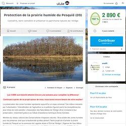 Protection de la prairie humide du Pesquié (09)