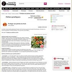 Protéger ses plantes du froid - Fiche pratique