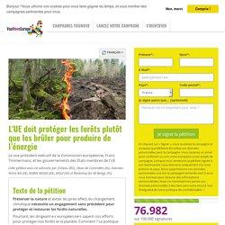 L'UE doit protéger les forêts plutôt que les brûler pour produire de l'énergie
