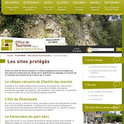 Les sites protégés incontournables des Isles du Marais poitevin