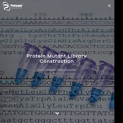 Protein Mutant Library Construction - Profacgen