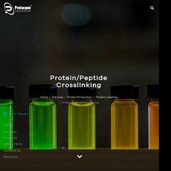 Protein/Peptide Crosslinking - Profacgen
