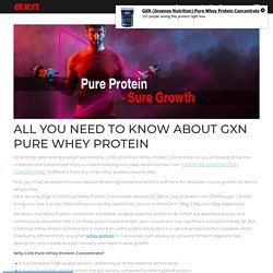 All You Need to Know About GXN Pure Whey Protein - Greenex Nutrition