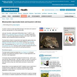 Blood protein rejuvenates brain and muscle in old mice - health - 04 May 2014