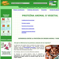Proteína animal o vegetal