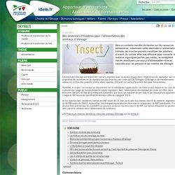INSTITUT DE L ELEVAGE 27/06/13 Des protéines d'insectes pour l'alimentation des animaux d'élevage