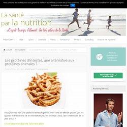 Les protéines d'insectes, une alternative aux protéines animales ? - Articles Santé