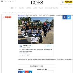 """Déguisés en orques à l'étroit dans une baignoire : des militants de Peta protestent devant """"la prison meurtrière"""" de Marineland à Antibes"""