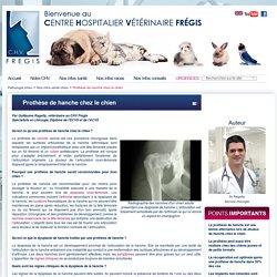 Prothèse de hanche chez le chien