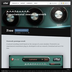 Protoverb: Experimental research reverb