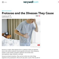 Protozoa and the Illnesses They Cause