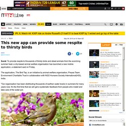 This new app can provide some respite to thirsty birds