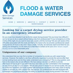 Looking for a carpet drying service provider in an emergency situation?