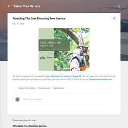 Providing The Best Trimming Tree Service