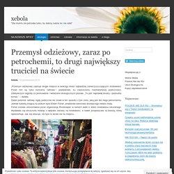 Przemysł odzieżowy, zaraz po petrochemii, to drugi największy truciciel na świecie