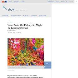 Your Brain On Psilocybin Might Be Less Depressed : Shots - Health Blog