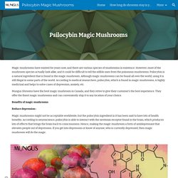 Psilocybin Magic Mushrooms - Psilocybin Magic Mushrooms