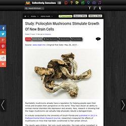 Study: Psilocybin Mushrooms Stimulate Growth Of New Brain Cells