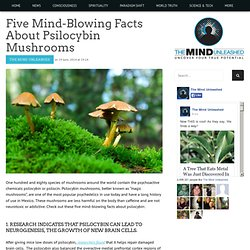 Five Mind-Blowing Facts About Psilocybin Mushrooms