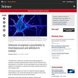 Chemists re-engineer a psychedelic to treat depression and addiction in rodents