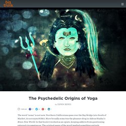 The Psychedelic Origins of Yoga