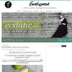 Go Green Hot´n Healthy » Psychedelic Raw Spring Rolls » Earthsprout - Go Green Hot´n Healthy